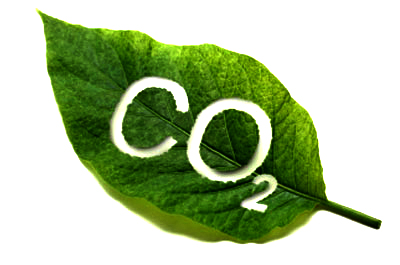 RU CO2 fertilization